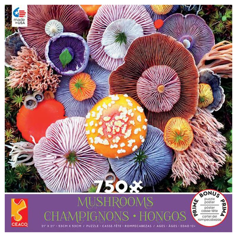 rompecabezas-750-piezas-mushrooms-ceaco-cea29291