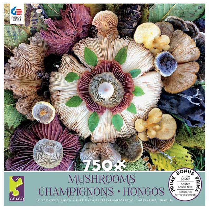 rompecabezas-750-piezas-mushrooms-ceaco-cea29293
