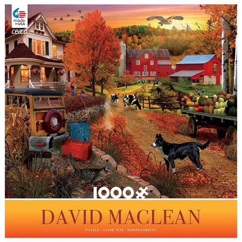 rompecabezas-1000-piezas-david-maclean-ceaco-cea33961